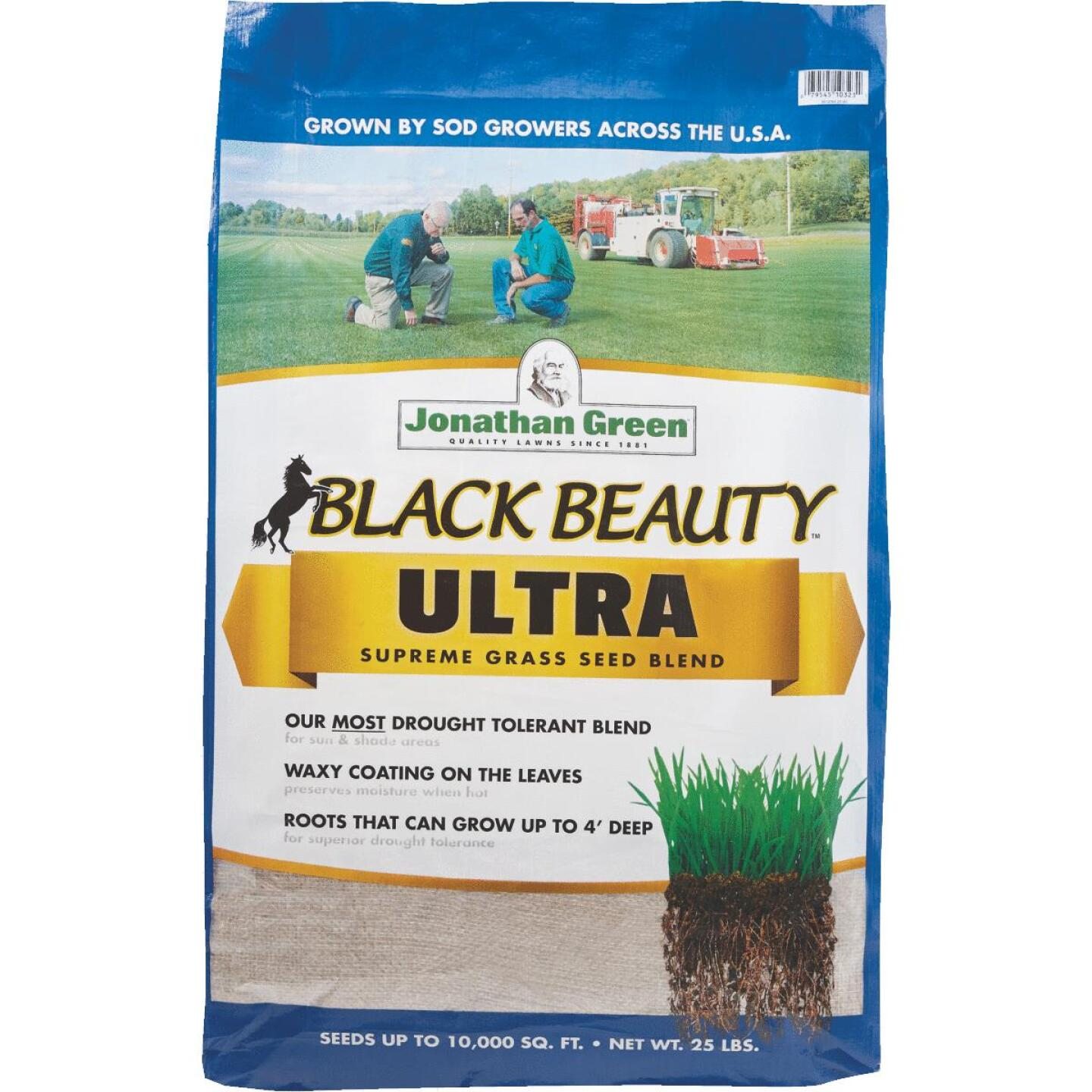 Jonathan Green Black Beauty Ultra 25 Lb. 5000 Sq. Ft. Coverage Tall Fescue Grass Seed Image 1