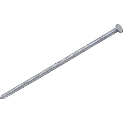 Grip-Rite 40d x 5 In. 7 ga Hot Galvanized Ring Shank Pole Barn Nails (840 Ct., 30 Lb.)