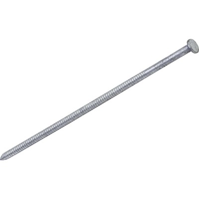 Grip-Rite 60d x 6 In. 5 ga Hot Galvanized Ring Shank Pole Barn Nails (510 Ct., 30 Lb.)