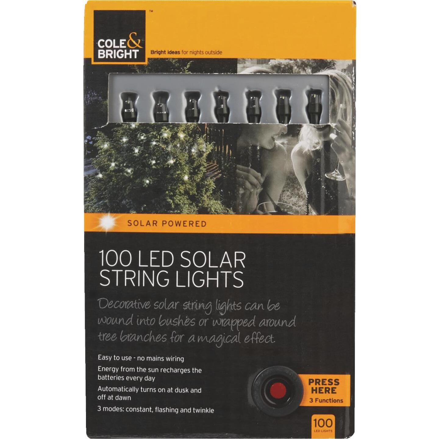 Cole & Bright 36 Ft. 100-Light White Bulb Solar String Lights Image 1