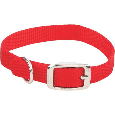 Westminster Pet Ruffin' it Adjustable 14 In. Nylon Dog Collar